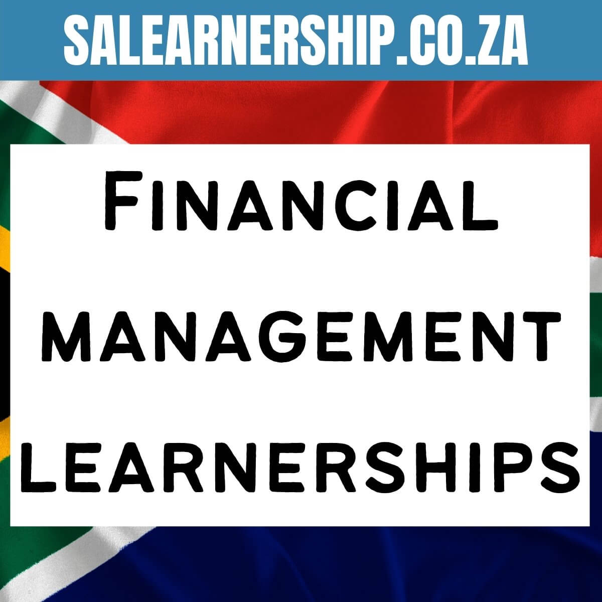 Financial management learnerships